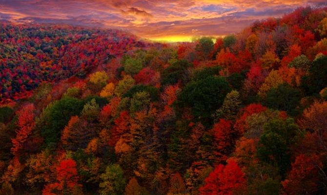 5 weekend tra i colori pi belli del foliage in italia - Immagini del cardellino orientale ...