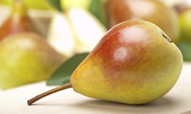 Pera mantovana igp la dolcezza si fa in sei for Mostarda di pere mantovana