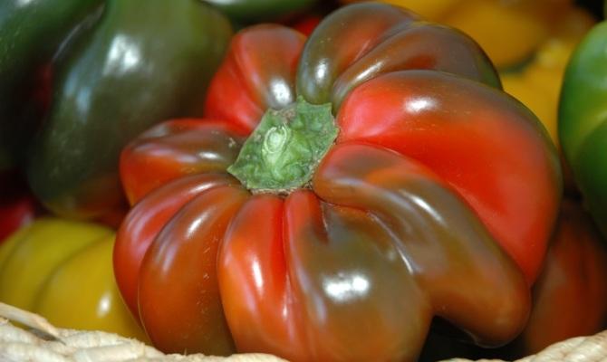 Papaccella napoletana come cucinare i veri peperoni ripieni - Cucinare i peperoni ...
