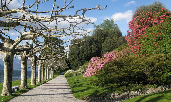 Villa melzi d 39 eril incantevoli giardini vista lago - Giardini di villa melzi ...