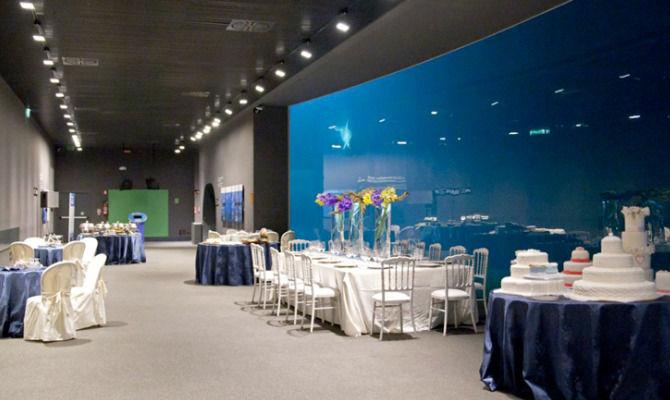 Tempo di nozze all 39 acquario di genova for Blu di metilene acquario