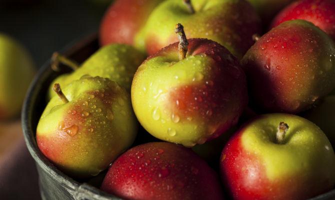 Verona a belfiore le mele degli antichi romani for Ricette degli antichi romani