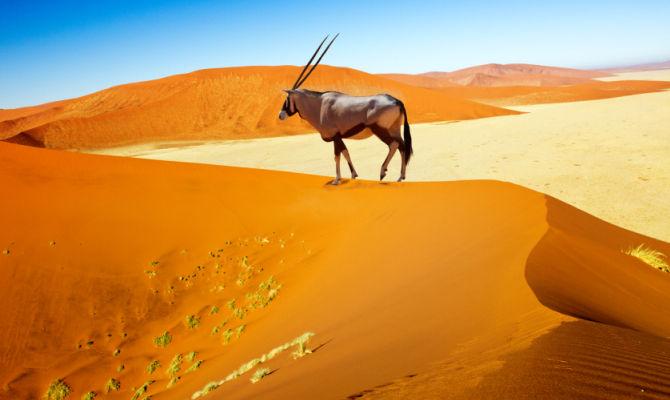 Namibia: 5 cose da sapere prima di partire