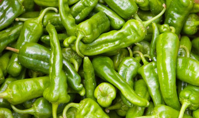 Campania pat come cucinare il peperoncino friariello for Cucinare friggitelli