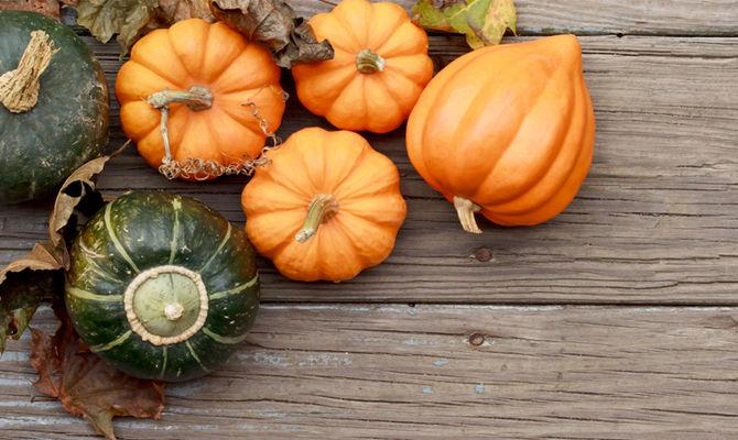 Zucca Halloween Essiccare.Piozzo Il Paradiso Della Zucca