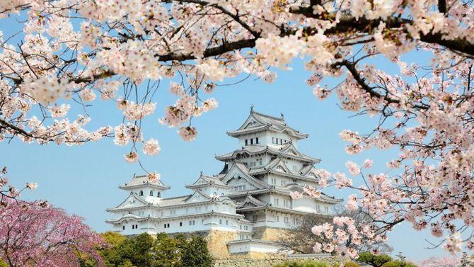 Giappone incantato coi ciliegi in fiore for Casa tipica giapponese