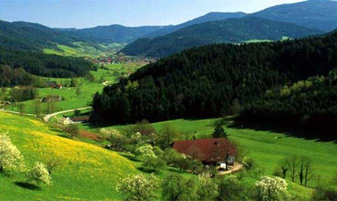 La strada degli orologi nella foresta nera - Dogana svizzera cosa si puo portare ...