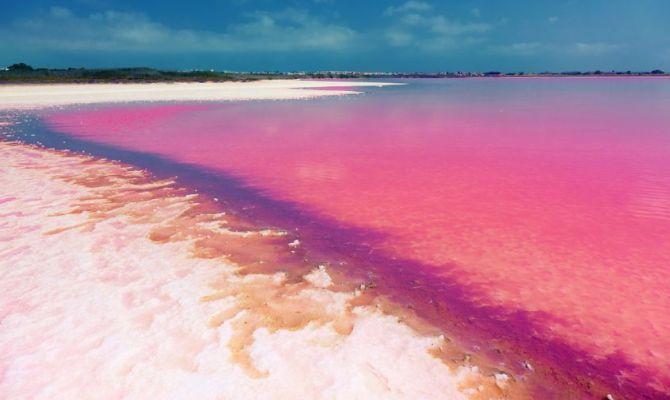 Video le 10 spiagge rosa pi incredibili del mondo 1 in for Colore vento di sabbia deserto